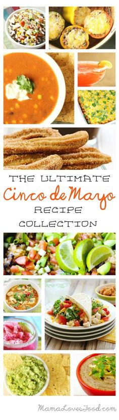 The Ultimate Cinco de Mayo Recipe Collection - 64 AMAZING RECIPES!