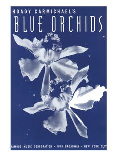 size: Stretched Canvas Print: Song Sheet Cover: Hoagy Carmichael's Blue Orchids : Using advanced technology, we print the image directly onto canvas, stretch it onto support bars, and finish it with hand-painted edges and a protective coating. Sheet Music Art, Song Sheet, Vintage Sheet Music, Vintage Sheets, Hoagy Carmichael, Blue Orchids, Music Covers, Painting Edges, Stretched Canvas Prints