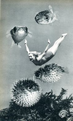 Amélie Chunleau ~ photo collage via tetradia.tumblr.com *The art on this Tumblr account is ALL by Villejavat (aka Amélie Chunleau)*