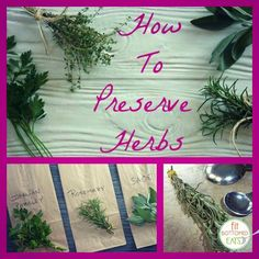 Garden runneth over with herbs? Preserve them with this handy dandy DIY tutorial! | Fit Bottomed Eats