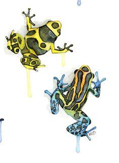 Poison Dart Frog Print de ma peinture par TheColorfulCatStudio