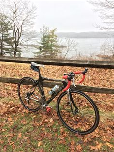 My 2009 Orbea Orca on Christmas Day 2016 in Indy's Eagle Creek Park. I try to ride every Christmas Day.