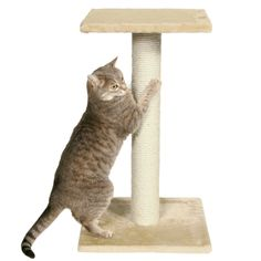"15.5""; L X 15.5""; W X 27""; H, Plush tower provides opportunities for cats to climb, scratch & relax while you can enjoy watching them play & explore. Your kitty can sharpen his or her claws on the durable, sisal scratching post."