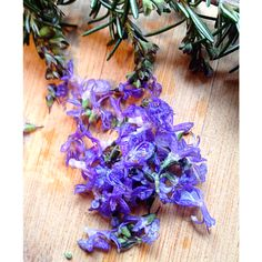 Rosemary flowers are gorgeous edible blooms perfect garnish for anything from gnocchi to cupcakes