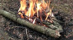 A Campfire for Every Occasion / The ReadyBlog