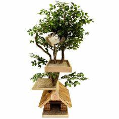 Tierfreundliche Katzenmöbel und Kratzbäume pflanzen