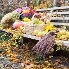 Mums can round out any fall display. Mix with pumpkins, gourds, apples, and hedge balls for a space that's unmistakeably autumn.