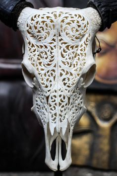 Beautiful Vines Hand Carved Steer/ Cow Skull with by AureusArts
