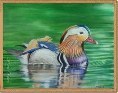 Maria Villioti - breaths of art Portrait Sketches, Art Sketches, Colored Pencils, Bird, Drawings, Painting, Animals, Colouring Pencils, Animales