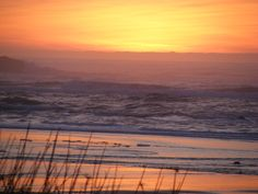ON THE HILL WHERE I USED TO LIVE.  NEWPORT OREGON.  DODODO DODO OUT MY BACK DOOR!