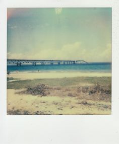 taken by Jill Laudenslager on Impossible #PX70 COOL film