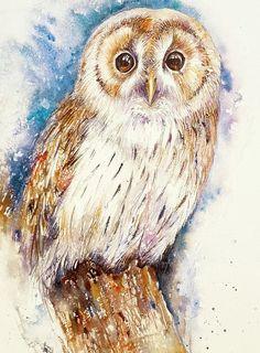 Olga the Tawny Owl