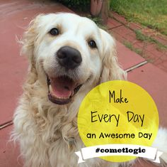 What's your #cometlogic to make everyday an awesome day? http://instagram.com/p/r-hOR_CpR_/