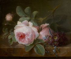 Dutch painter Cornelis van Spaendonck a master of the still life flowers was born on this date in This is Cabbage Rose. Arte Floral, Decoupage, Still Life Flowers, Dutch Painters, Cabbage Roses, Tile Murals, Marquise, Rose Art, Botanical Illustration