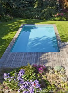Small Swimming Pools, Small Backyard Pools, Backyard Pool Designs, Swimming Pool Designs, Pool Landscaping, Outdoor Pool, Rectangular Pool, Pet Water Fountain, Plunge Pool