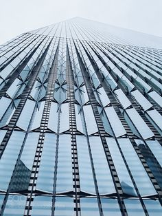 One World Trade Center by beatrizbajuelos #architecture #building #architexture #city #buildings #skyscraper #urban #design #minimal #cities #town #street #art #arts #architecturelovers #abstract #photooftheday #amazing #picoftheday