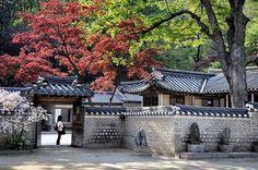 El jardín secreto del palacio Changdeokgung - Déjate sorprender por Corea del Sur