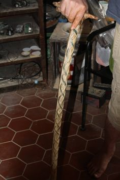"""Not done with this project yet but figured I would post at least one pic of it. This is a cane I am working on from a piece of wood my uncle found on his property. It has 4 """"heads"""" which I carved a Viking style dragon on each of and then carved a Celtic knot down the spine of the cane. I have finished this further so all the markings for the outline I are gone now (all the green). I will post more pictures when this is finished. Sadly only one picture per post on Pinterest"""