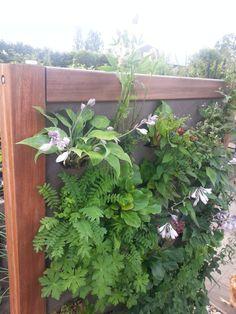 De Vertiplant Double verticaal tuinieren