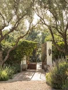 Outdoor Rooms, Outdoor Gardens, Outdoor Living, Backyard Patio, Backyard Landscaping, Mediterranean Garden Design, Garden Gates, Dream Garden, Garden Inspiration