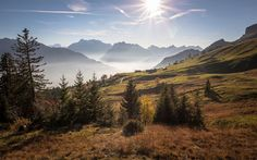 Download wallpapers Saint Gallen, mountain landscape, morning, sunrise, green hills, mountains, Alps, Switzerland