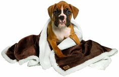 Animal Planet Sherpa Pet Blanket, Brown -- You can find more details by visiting the image link.