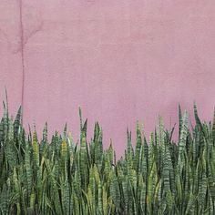 #rsa_minimal #ig_minimalshots #minimalism #minimalista_ve #ignt_colorcoding #huntgram #minimalista_ve #tv_simplicity #mini_funtastic #vscocam #vascocam #vasco #instamood #mindtheminimal #vertex_gallery #arkiromantix_bw