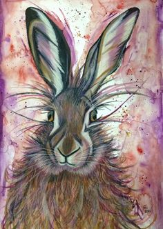 Hare, watercolour and neocolor pastels.  40x60 cm