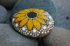 Painted Sunflower rock