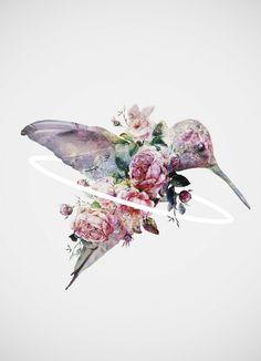Kolibri - Dániel Taylor - Leinwandbild