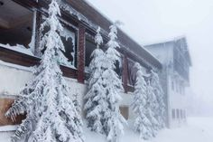 """This is kind of like that – except this is real life. 