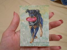 Rottweiler watercolor ACEO print. aceo by CatladyWatercolors