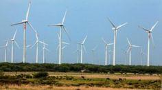 Necesario dar certeza jurídica a las inversiones eólicas: Moreno Sada