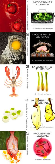 Modernist Cuisine - most coveted book by chefs - I want all 5!