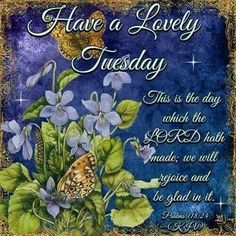 Have A Lovely Tuesday  good morning tuesday tuesday quotes tuesday images good morning tuesday tuesday quote images