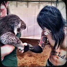 Ashley Purdy shaking hands with a koala #awee