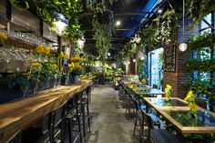 Aoyama Flower Market TEA HOUSEの店舗インタビュー取材。