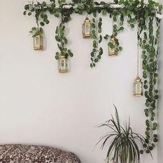 24 Strands Long Artificial Hanging Plants Vine Fake Foliage Green Ivy Leaf Garland For DIY Cheap Home Decorations For Sale House Plants Decor, Plant Decor, Fake Plants Decor, Plant Wall, Hanging Plants, Indoor Plants, Porch Plants, Hanging Beds, Sun Plants