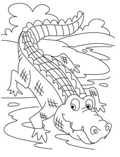 Fresh Gator Coloring Pages 98 Crocodiles Go Into Water