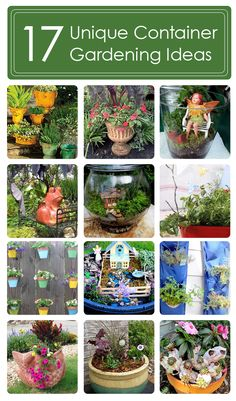 17 unique container gardening ideas.