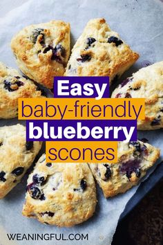 These easy scones are great for baby led weaning and introducing solids because they pack lot of nutritious ingredients and are quick to prep and cook. You can switch the blueberries for something else and the basic ratio is easily adaptable to other fillings too. Great for toddler meals and older kids breakfasts or lunch boxes. Healthy Meals For Kids, Healthy Baking, Easy Healthy Recipes, Baby Food Recipes, Baby Meals, Kid Meals, Meals For One, Baby First Foods, Baby Finger Foods