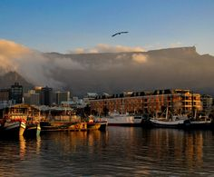 Marina located in South Africa, one of the countries we work in. #SouthAfrica