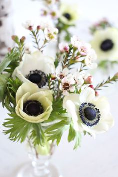 soft spring table decor, white anemone flower and soft pink waxflower