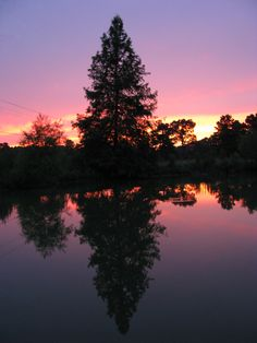 our pond at sunset
