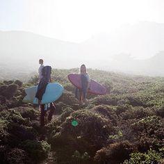 Morning mist in Big Sur @Bruna Coral Schmitz @Keli Alvarez Moniz @Monyca with a y Byrne-wickey