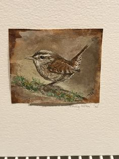 Wren on recycled tea bag Trish Williams Tea Bag Art, Wren, Needlework, Art Ideas, Recycling, Watercolor, Embroidery, Sewing, Cards