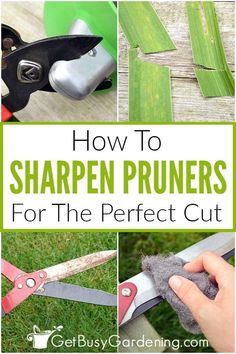 Pruning Tools, Pruning Shears, Garden Projects, Garden Tools, Garden Sheds, Gardening For Beginners, Gardening Tips, Diy Projects On A Budget, Starting A Garden