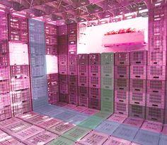 interior crates