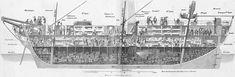 Inside a Packet Ship, 1854