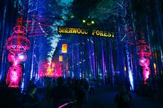 electric forest 2014  #EDM #EOTO #MusicFestival #8Tracks #Playlist #SherwoodForest